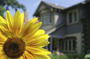5 Ways Sellers Prepare Homes for the Spring Market (1)