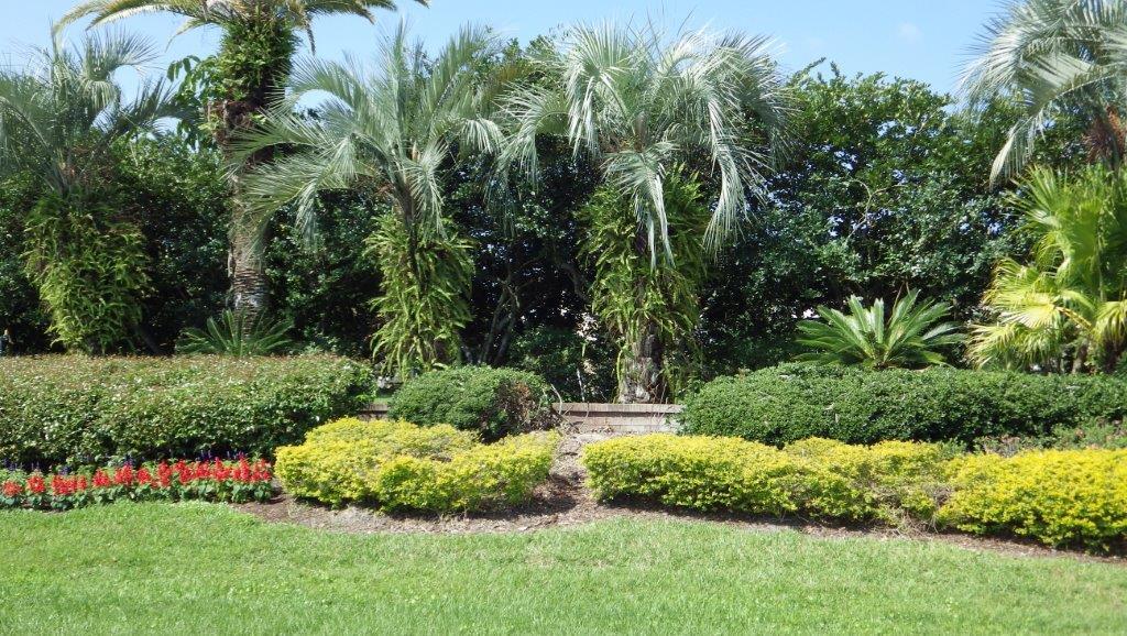 Tampa Palms (16)