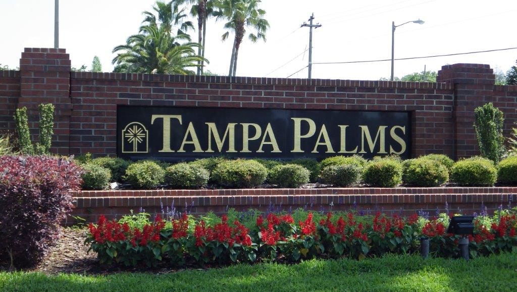Tampa Palms (17)