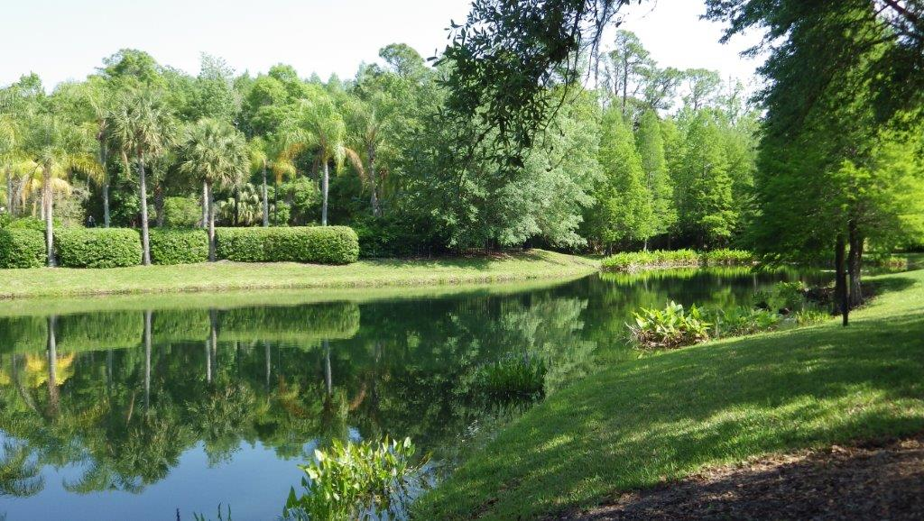 Tampa Palms (5)