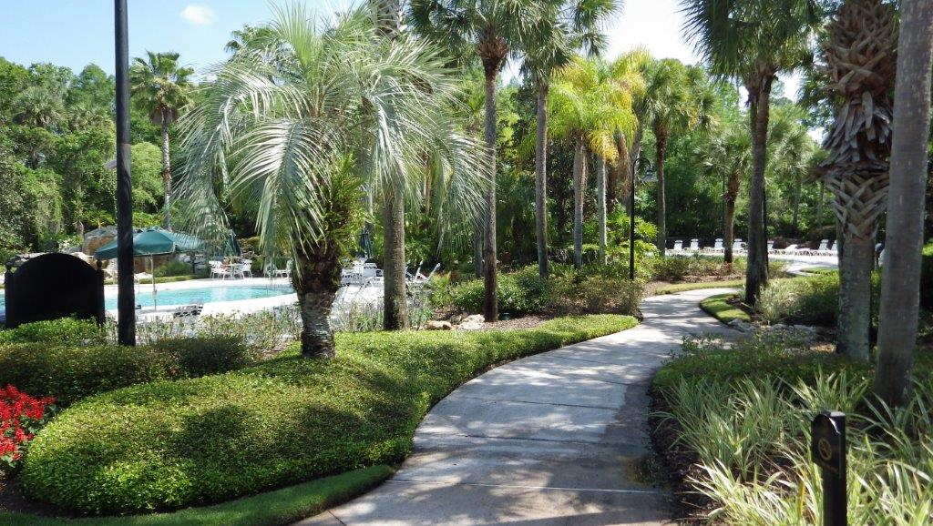 Tampa Palms (8)