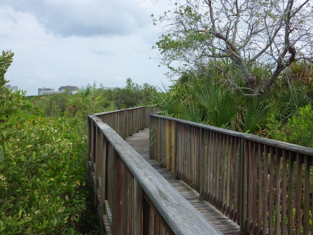 4302 Bayside Village Drive, Beachwalk, SI Real Estate Tampa (16)