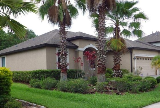 Grand Hampton, 7905 Hampton Lake Drive Tampa, SI Real Estate Tampa (26)