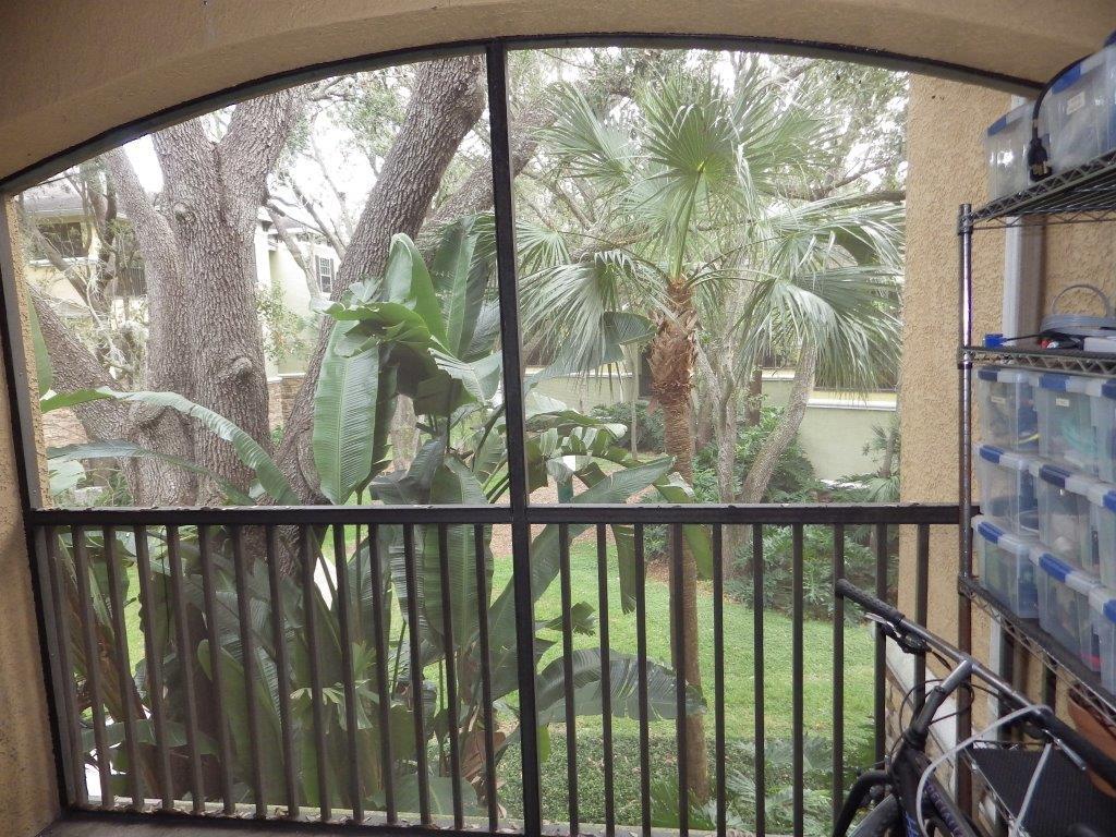 10121 Courtney Palms unit 203, Tampa Florida (6) - Copy