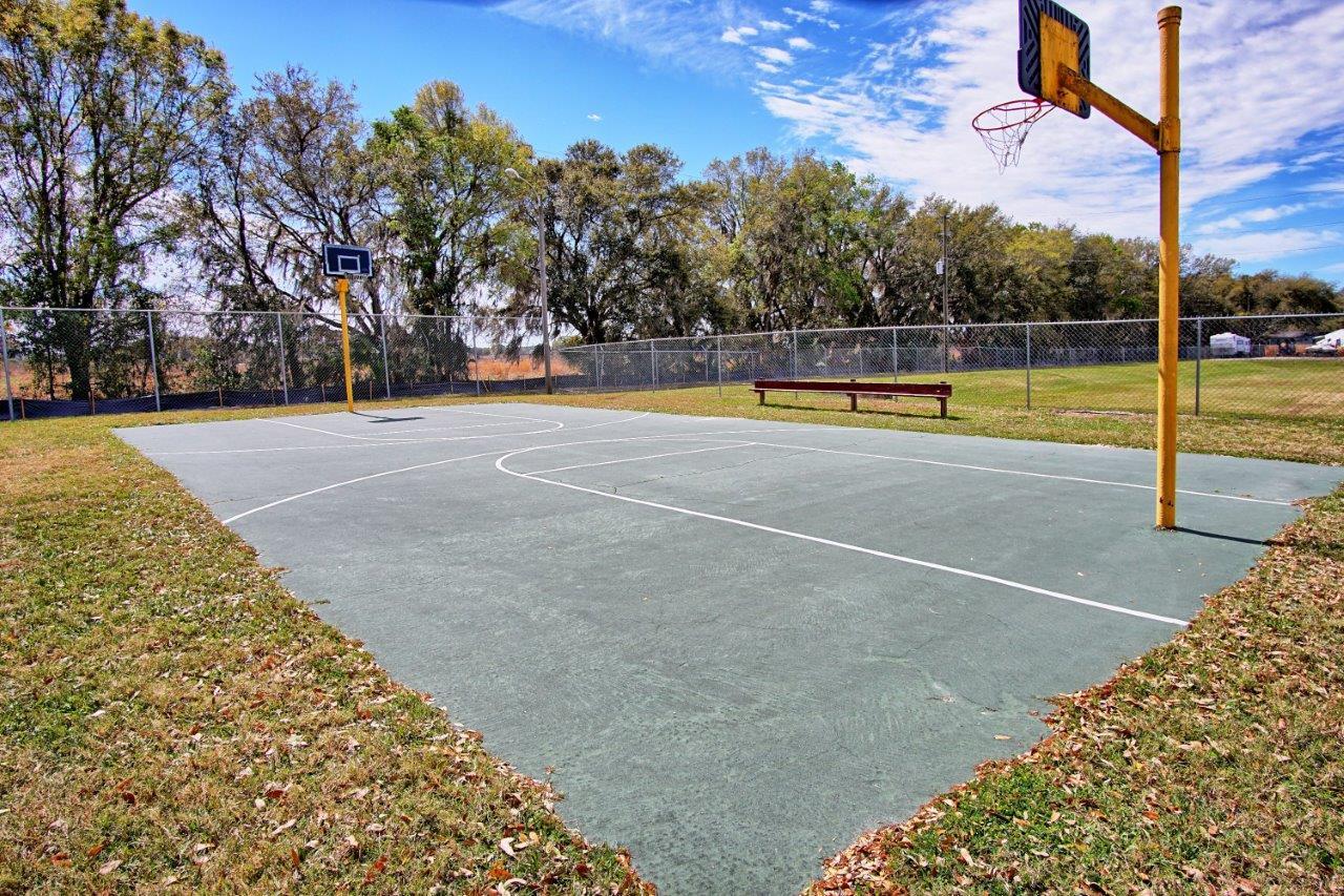 3140 Hidden Lake Drive, Wesley Chapel Florida , Timer Lake Estates (17)