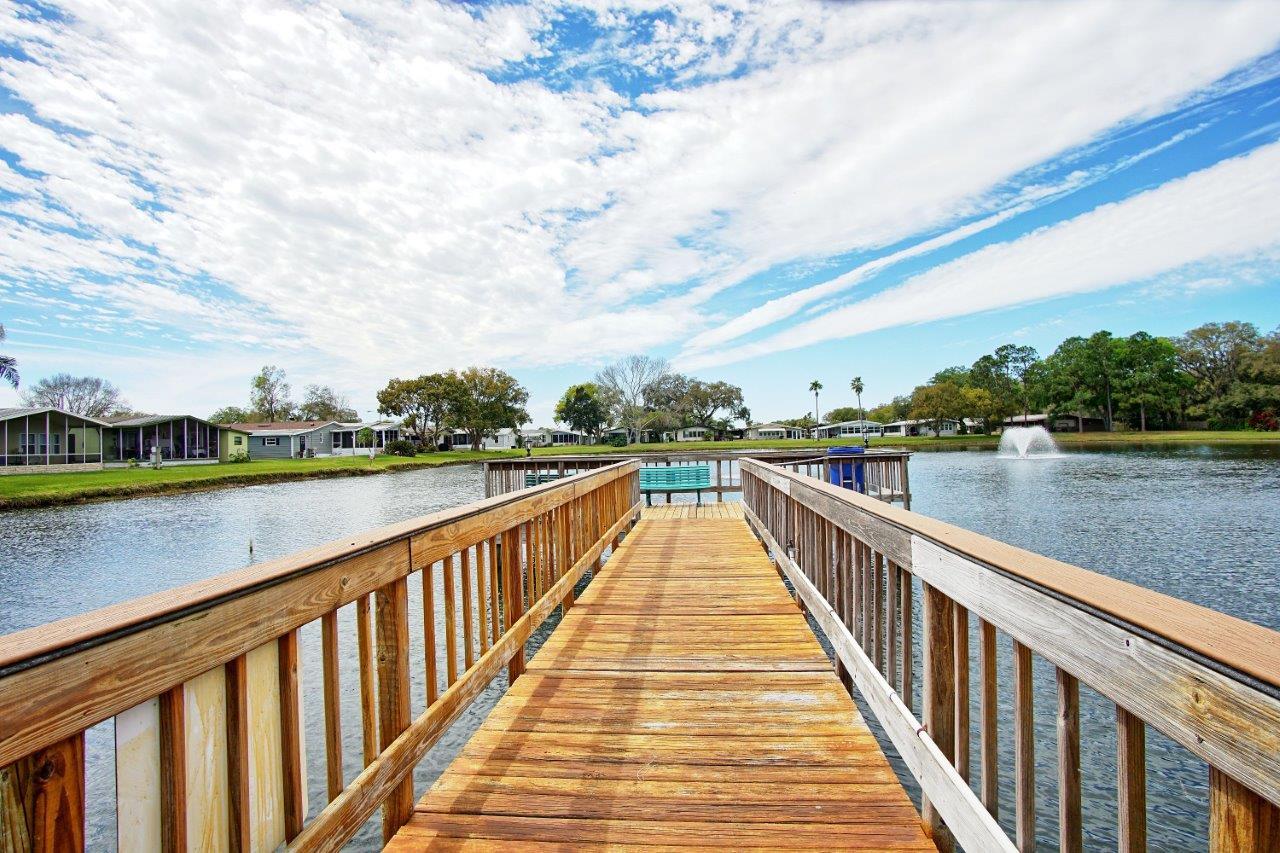 3140 Hidden Lake Drive, Wesley Chapel Florida , Timer Lake Estates (27)