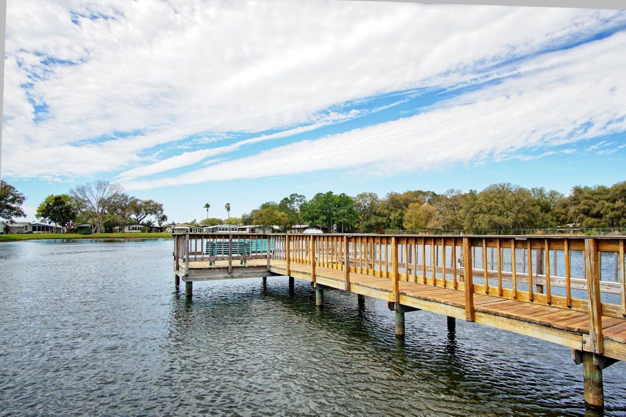 3140 Hidden Lake Drive, Wesley Chapel Florida , Timer Lake Estates (28)