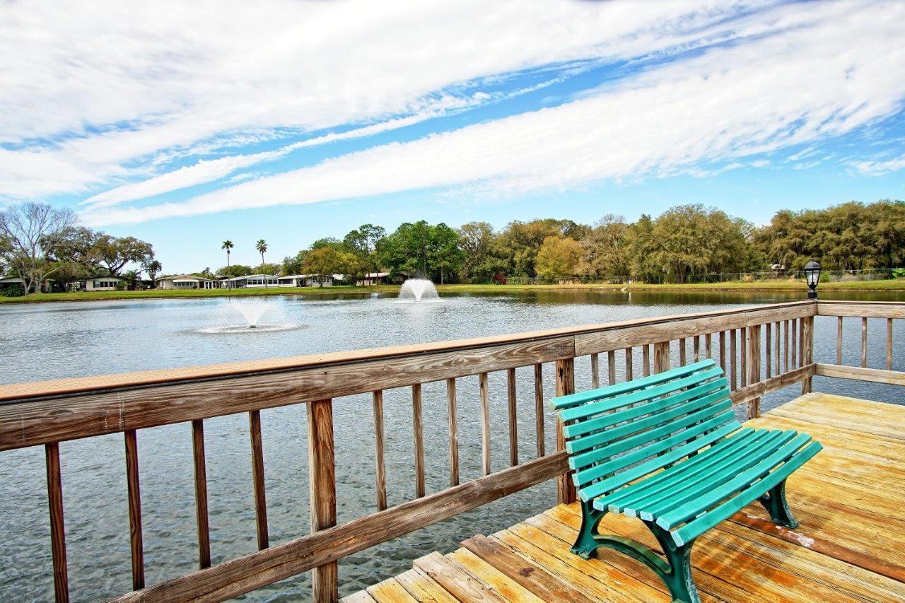 3140 Hidden Lake Drive, Wesley Chapel Florida , Timer Lake Estates (29)